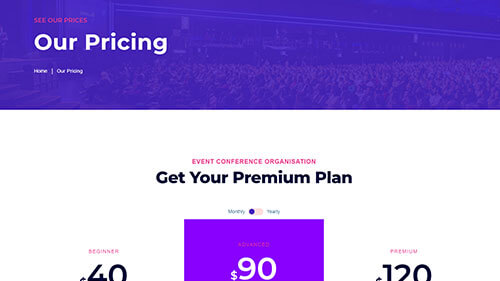 Image Preview of Pricing Product