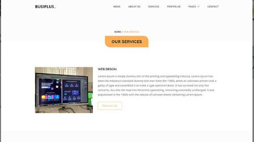 Image Preview of Services V2 Product