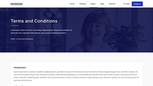 Image Preview of Terms & Conditions Product