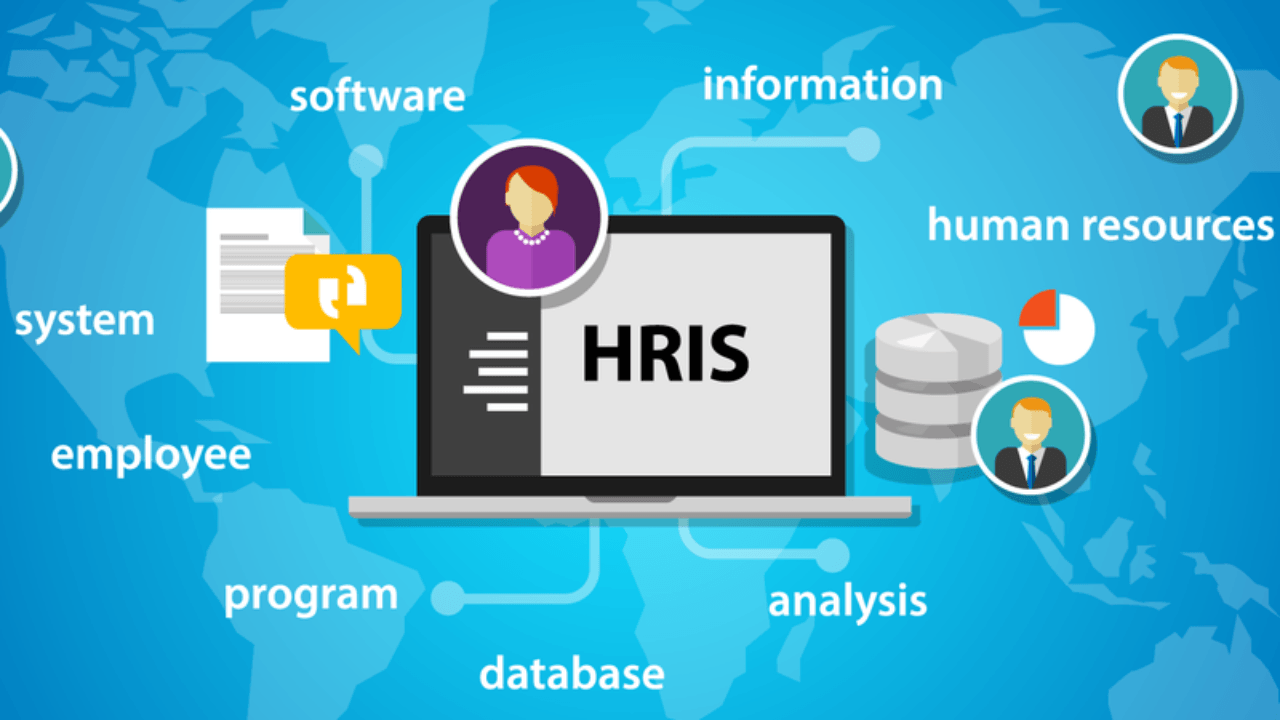 HRIS Software For Construction Companies